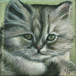 custom cat portrait   persian kitten painting