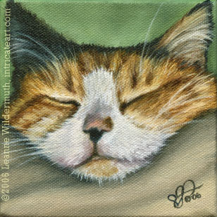 custom cat portrait   calico cat painting